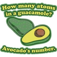 how_many_atoms_in_a_guacamole_avocados_number_t