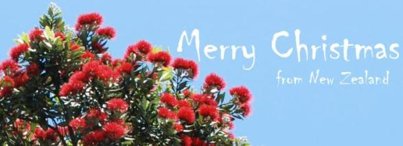 merry-christmas-from-new-zealand-700--